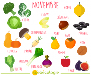 novembre-fruit-legume